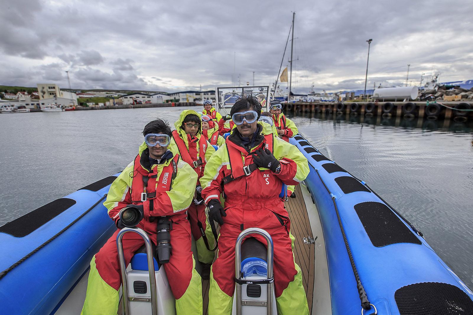Whale sightings, Husavik, Iceland