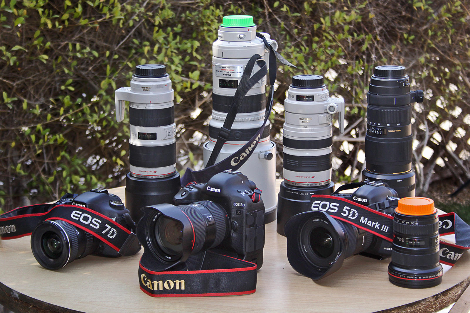 THE  CAMERAS  AND  THE  LENS  KITS.